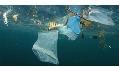 World Environment Day trended top on twitter, celebs urged people to beat plastic pollution