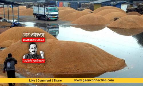 भारत में अनाज के बंपर उत्पादन का मतलब है बंपर बर्बादी की तैयारी