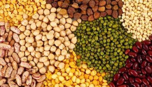 Are imported pulses carcinogenic? - Government assures enquiry