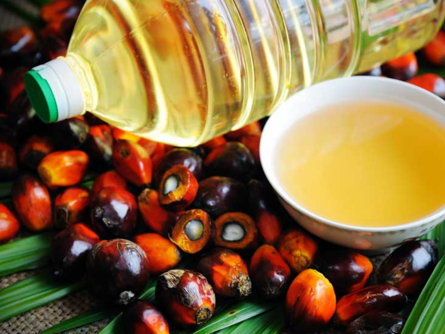 palm oil price down in market, palm oil rate in Indian market