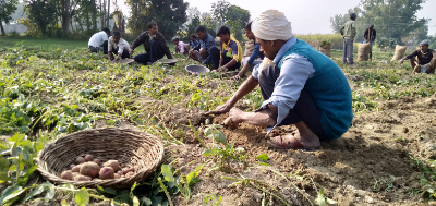 Are loan waivers helping farmers?