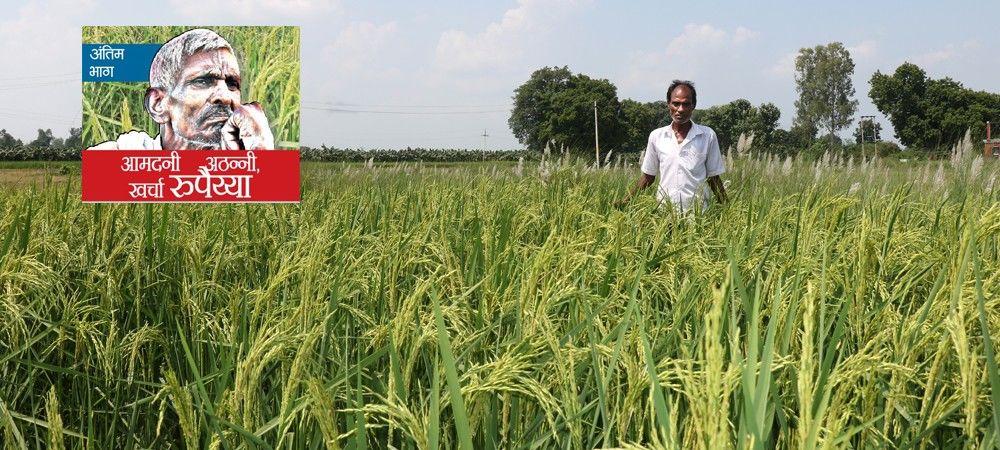 सरकारी रिपोर्ट : किसान की आमदनी 4923 , खर्चा 6230 रुपए